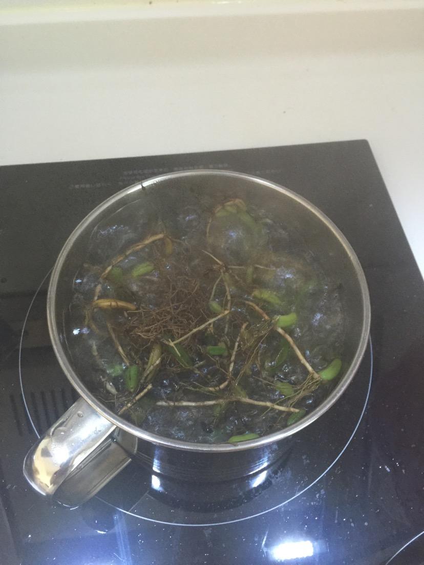 石橄榄炖汤的做法步骤