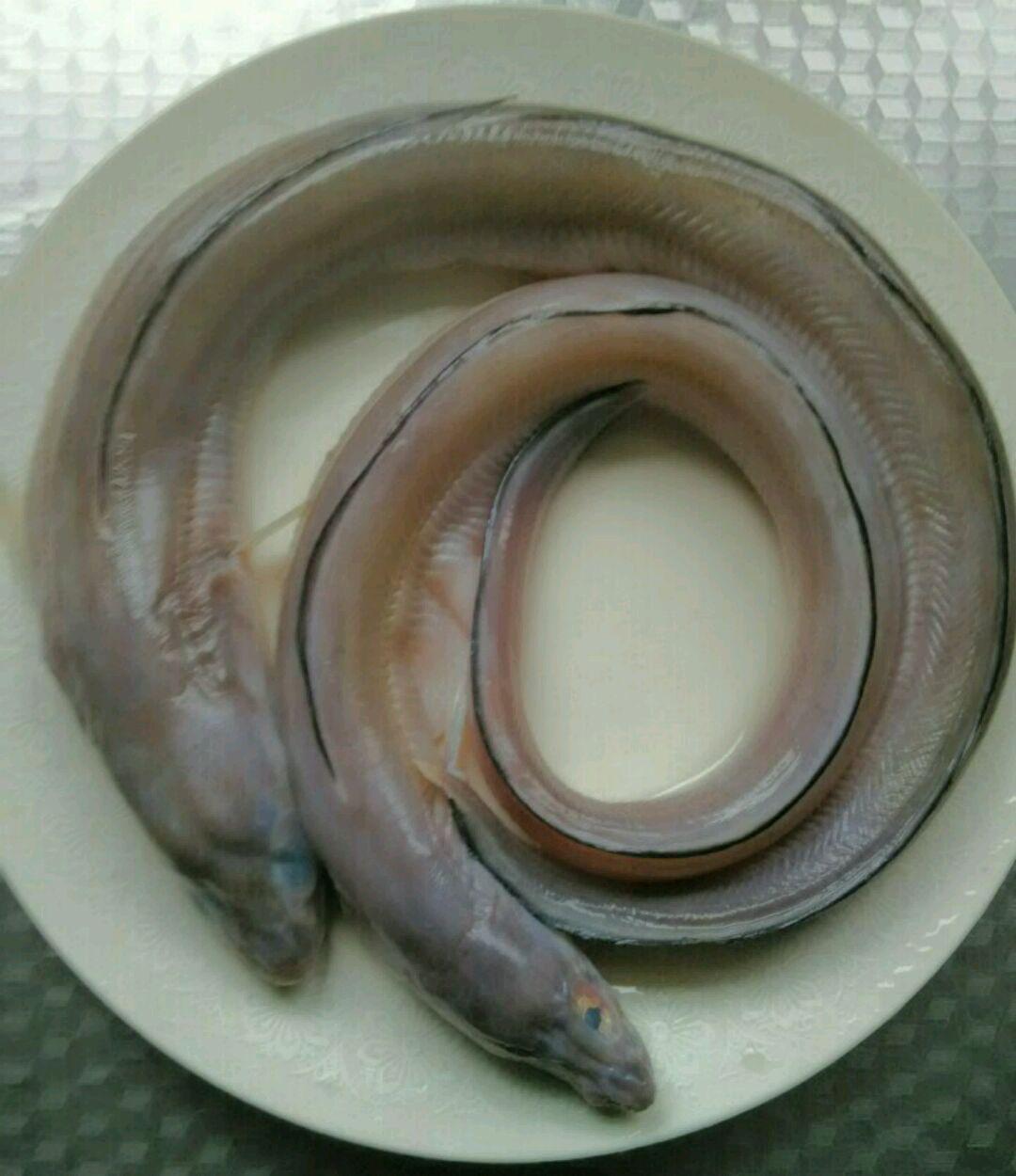 炖海鳝鱼的做法图解1