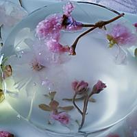 花之语水晶玄饼(可以吃的茶冻。美的不忍下口)的做法图解9