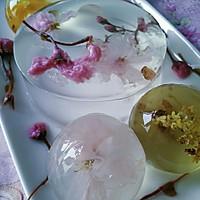 花之语水晶玄饼(可以吃的茶冻。美的不忍下口)的做法图解13