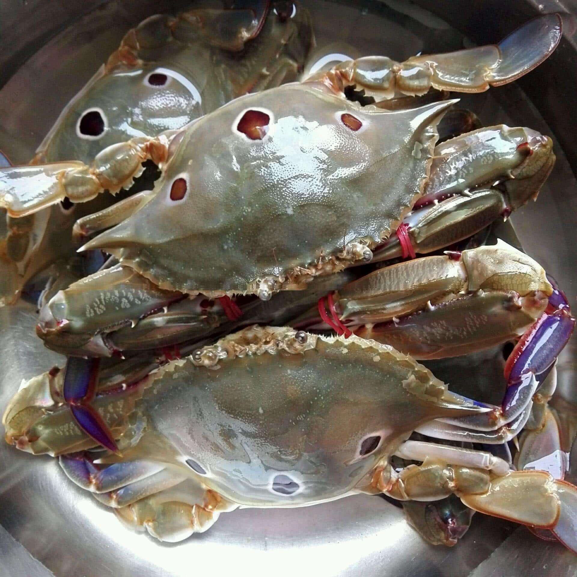 螃蟹白菜汤的做法图解1