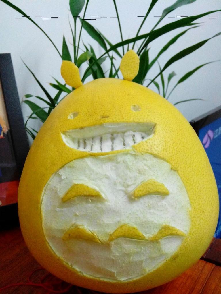 柚子皮做小动物手工海龟