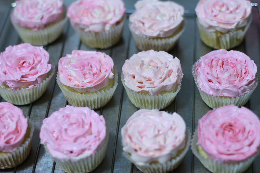 将24个纸杯蛋糕都裱成玫瑰花型的奶油霜