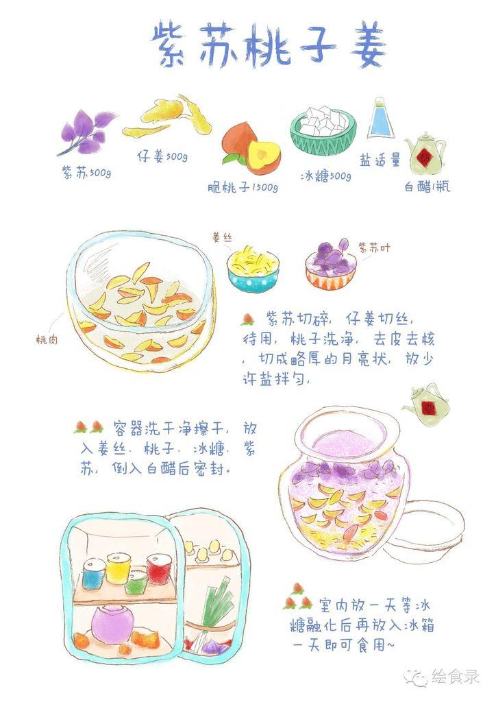 【手绘食谱】紫苏桃子姜 让夏日的味蕾急速分泌唾液
