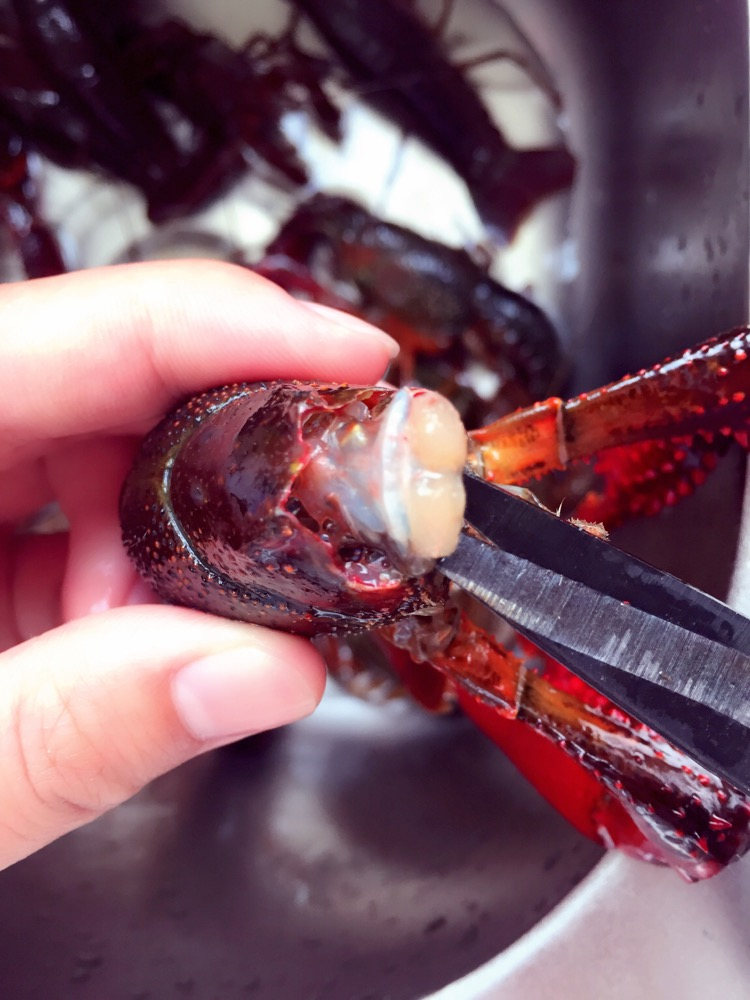 小龙虾(史上最科学清洗小龙虾步骤)的做法图解5