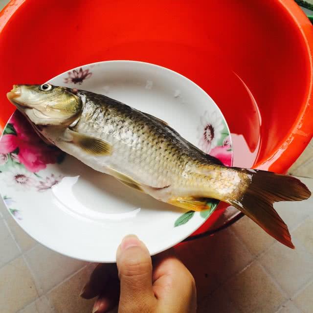 红烧小鲫鱼的做法图解1