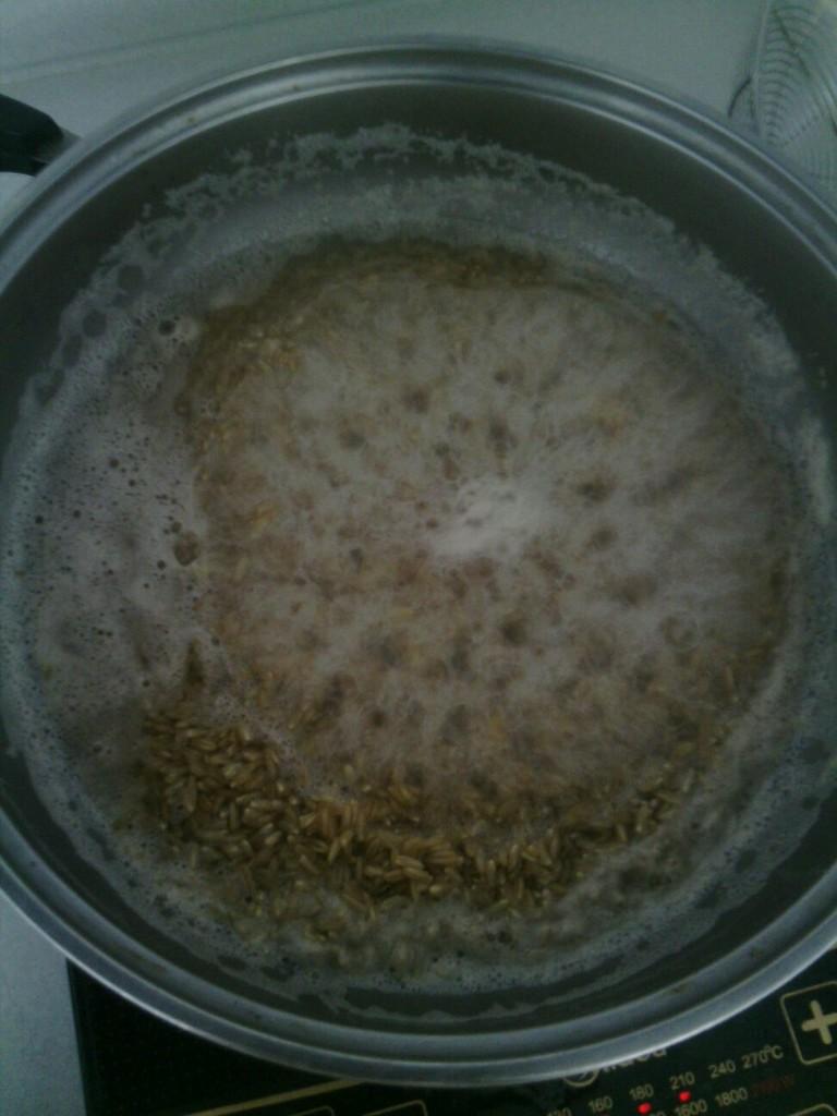 做过米酒,用糯米做,觉得硬度够,但是不够甜;用大米做,很甜,但是口感差点。改成燕麦为原料,甜度够,也有嚼劲。顺便推销一下我的淘宝店,主要卖纯正五常稻花香大米,这种吃了让人有幸福感的米,所以域名是happyrice.taobao.com。也有燕麦顺带卖哦