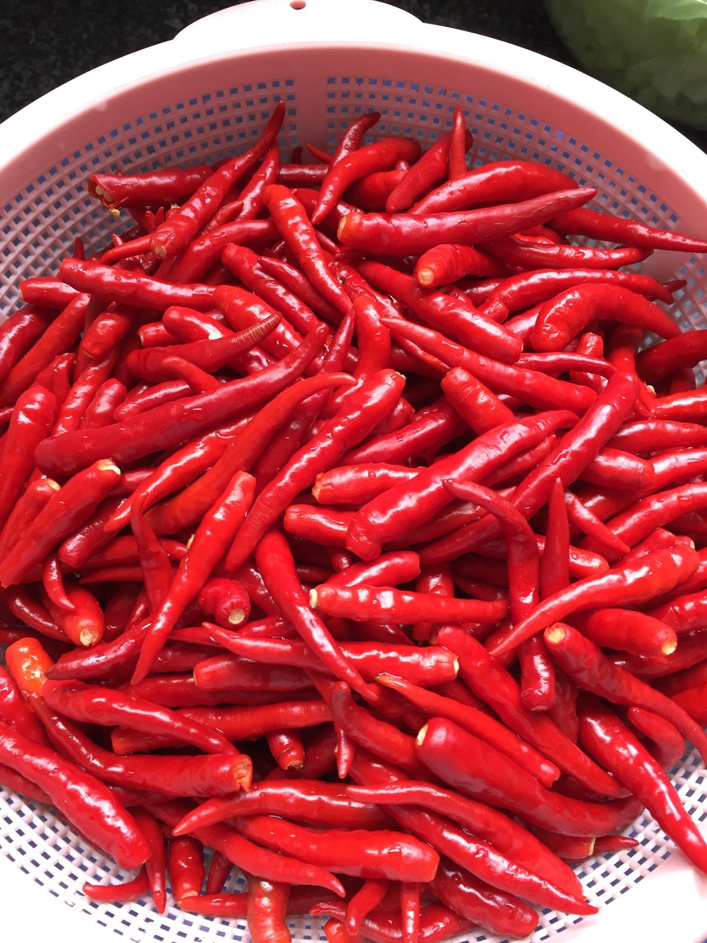 辣椒酱的做法步骤