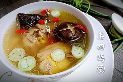 羊肚菌老母鸡汤【菌菇鸡汤】by蜜桃爱