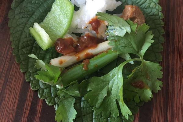 绿色素菜菜谱大全图片