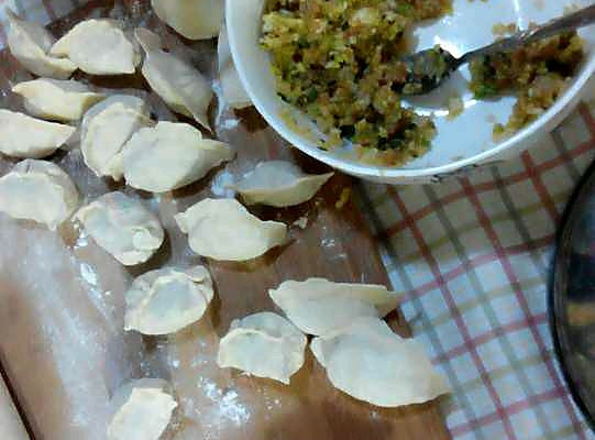 茴香猪肉做法和饺子韭菜饺的白菜_【寄语】韭海猪肉图解图片