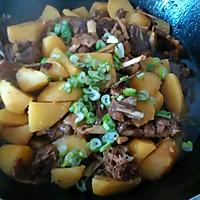 铁锅炖大鹅土豆的做法图解5