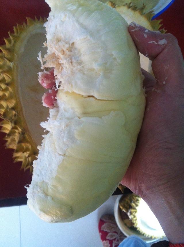简易版榴莲酥的做法步骤 2.