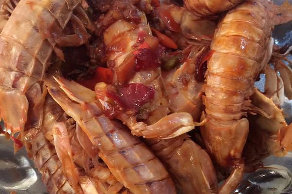 虾的繁殖季节