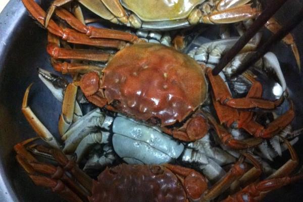 螃蟹小制作大全图片