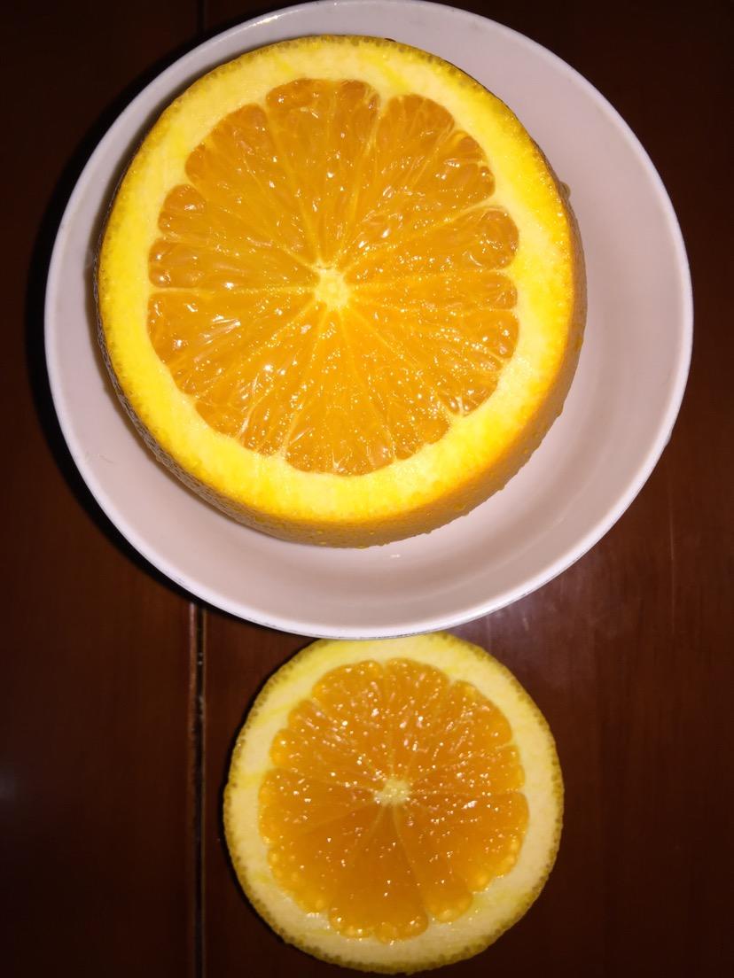 橙子做小动物图解