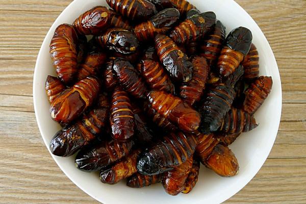 怎样炒出又酥又香的蚕蛹的做法 怎样炒出又酥又香的蚕蛹怎么做如何做图片