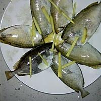 清理好泥鯭鱼,摆盘,盘底及鱼身上铺好姜丝.图片