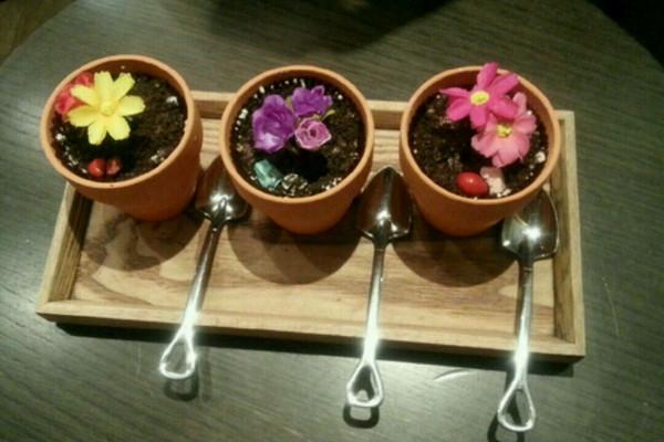 盆栽冰淇淋的做法