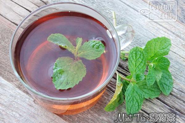 消暑饮品--薄荷茶的做法