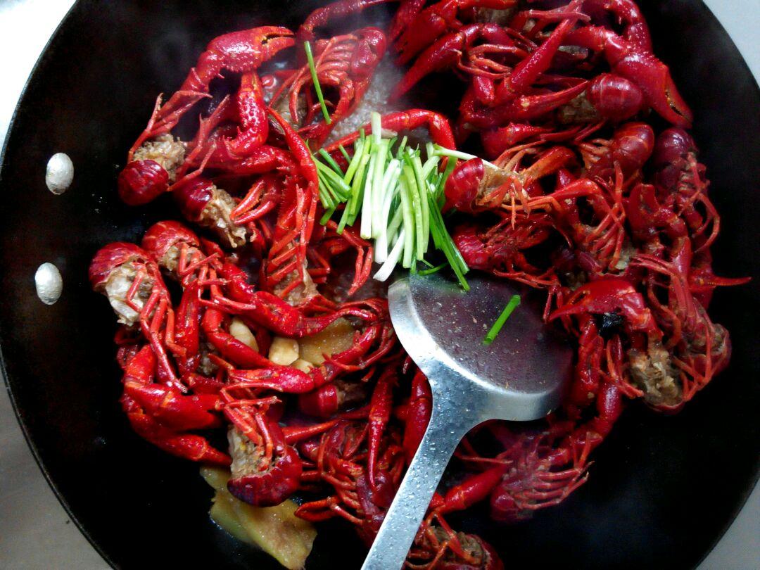 红烧龙虾的做法图解9